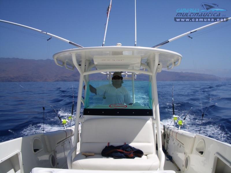Promarine 33 Open